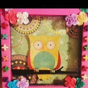 Pink Shadow BOX Owl frame